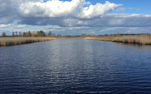 река Толба