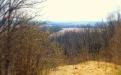 Вид на поле рядом с Шамордино